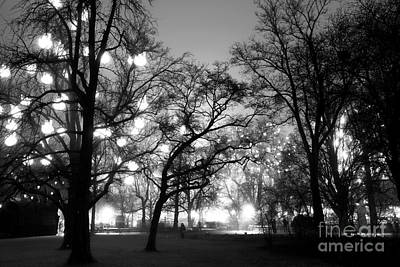 Photograph - Rathauspark At Night by John Rizzuto