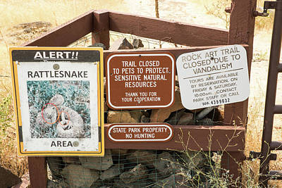Photograph - Rattlesnakes But No Pets by Tom Cochran