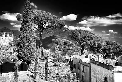 Photograph - Ravello Nature by John Rizzuto