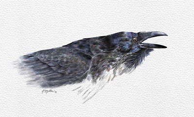 Painting - Raven 1 by Kathie Miller