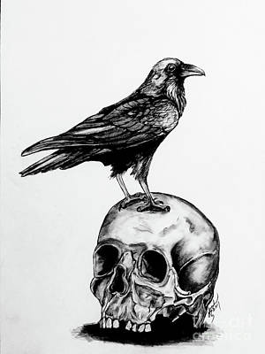 Drawing - Raven And Skull by Lorah Tout