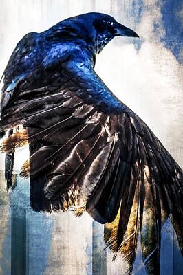 Photograph - Raven Attitude by Carolyn Marshall