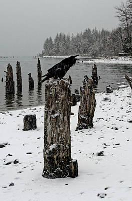 Raven Call Art Print
