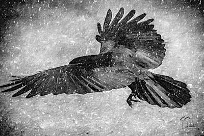 Digital Art - Raven In The Snow by Terry Fiala