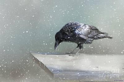 Raven In Winter Art Print