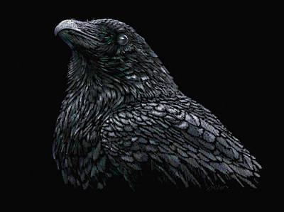 Pastel - Raven by Kathie Miller