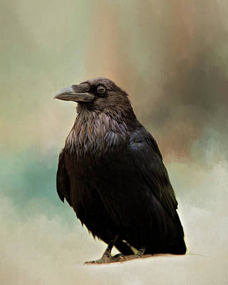 Photograph - Raven by Lana Trussell