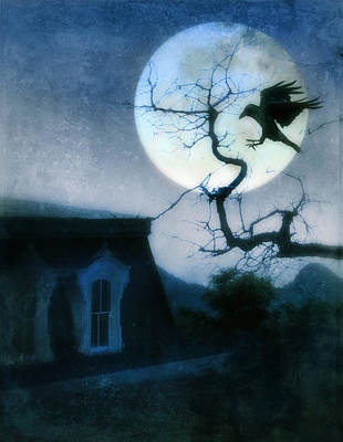Moonlit Night Photograph - Raven Landing On Branch In Moonlight by Jill Battaglia