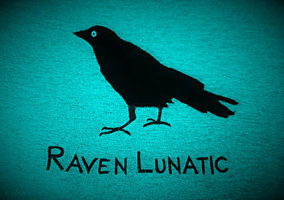 Photograph - Raven Lunatic Turquoise by Rob Hans