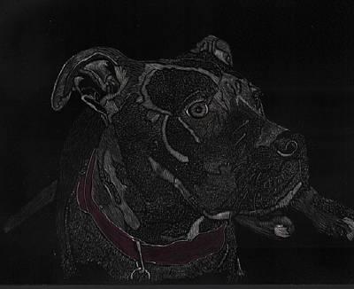 Raven Pit Bull Pup Art Print