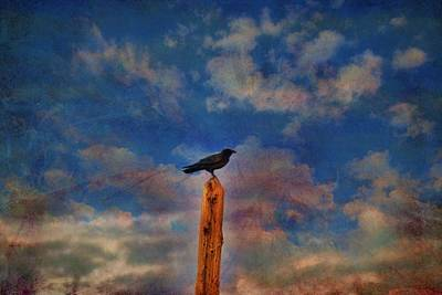 Photograph - Raven Pole by Jan Amiss Photography