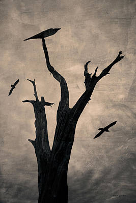 Photograph - Raven Tree by David Gordon