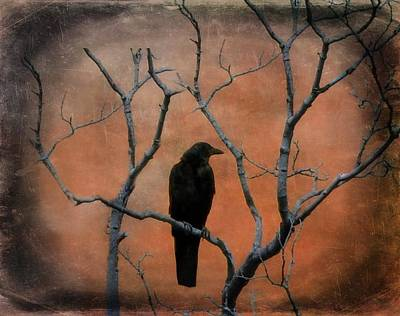 Crow Image Photograph - Rustic Raven Tree by Gothicrow Images