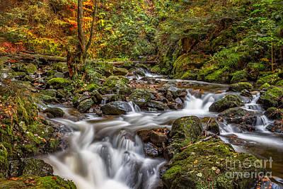 Photograph - Ravennaschlucht - Cascades And Waterfalls I by Bernd Laeschke