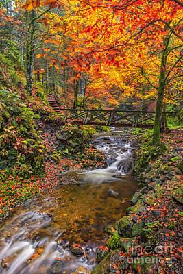 Photograph - Ravennaschlucht - Cascades And Waterfalls II by Bernd Laeschke