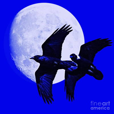 Crow In Flight Digital Art - Ravens Of The Moon . Blue Square by Wingsdomain Art and Photography