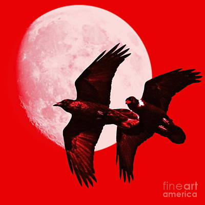 Crow In Flight Digital Art - Ravens Of The Moon . Red Square by Wingsdomain Art and Photography