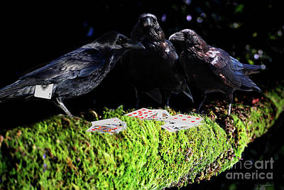 Raven Mixed Media - Ravens Playing Poker by Wingsdomain Art and Photography