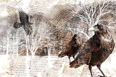 Surrealism Royalty-Free and Rights-Managed Images - Ravens with Newsprint Overlay in a surreal Forest by Randall Nyhof