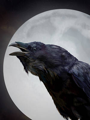 Digital Art - Ravensong by Nigel Follett
