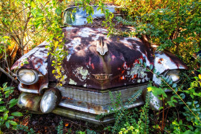 Photograph - Raw 1956 Cadillac by Alan Raasch