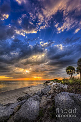 Seashore Photograph - Raw Beauty by Marvin Spates