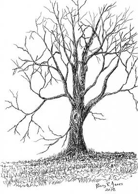 Drawing - Raw Nature by Barry Jones
