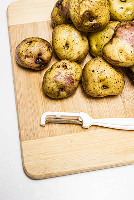 Spuds Photograph - Raw Potato Pile by Jorgo Photography - Wall Art Gallery