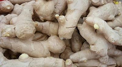 Photograph - Raw Root Ginger by Mudiama Kammoh
