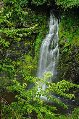 Photograph - Raymondskill Side Falls by Mark Robert Rogers