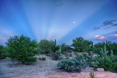 Photograph - Rays by Charlie Alolkoy