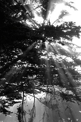 Photograph - Rays Of Light Bw by Gary Brandes
