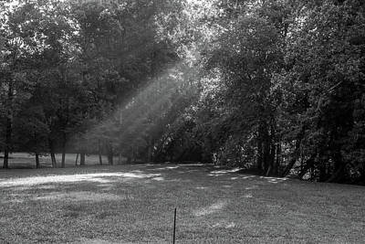 Photograph - Rays Of Light In Bw by Doug Camara