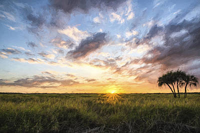 Foliage Image Digital Art - Rays On Myakka II by Jon Glaser