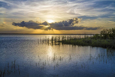 Rays Over The Marsh Art Print