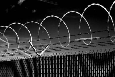 Photograph - Razor Wire In The Sun by Beverly Stapleton