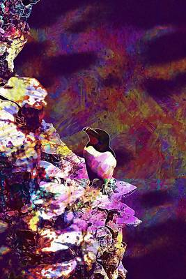 Razorbill Digital Art - Razorbill Bird Wildlife Animal  by PixBreak Art