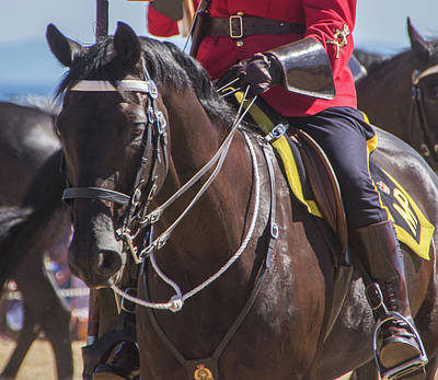 Photograph - Rcmp by Marilyn Wilson