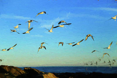 Photograph - Reach For New Horizons  by Dennis Baswell
