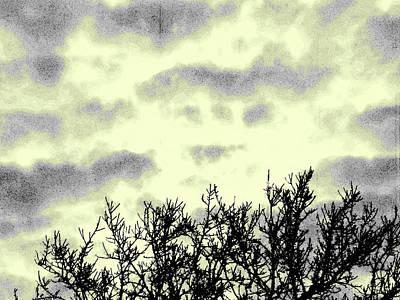 Photograph - Reach For The Sky by Ian  MacDonald