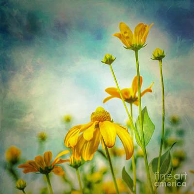 Flora Photograph - Reach For The Sky by Kerri Farley