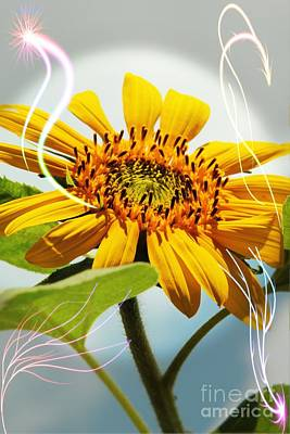 Photograph - Reach For The Sun by Lori Mellen-Pagliaro