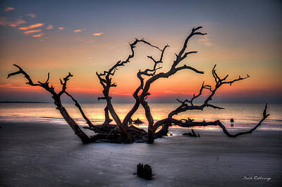 Photograph - Reaching Driftwood Beach Sunrise Jekyll Island Georgia Art by Reid Callaway