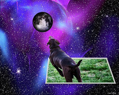Chocolate Labrador Retriever Digital Art - Reaching For The Moon by Roger Wedegis