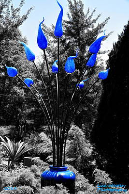 Photograph - Reaching For The Sky Selective Coloring by Lisa Wooten