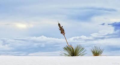 Photograph - Reaching by Rick Furmanek