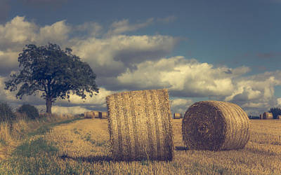 Bales Photograph - Reaching The End Of Summer by Chris Fletcher