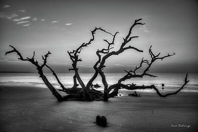 Photograph - Reaching Too Driftwood Beach Sunrise Jekyll Island Georgia  Jekyll Is by Reid Callaway