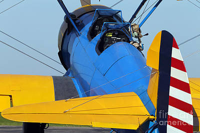 Ready For Flight. Print by Rick Mann
