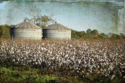 Country Scene Photograph - Ready For Harvest by Jan Amiss Photography